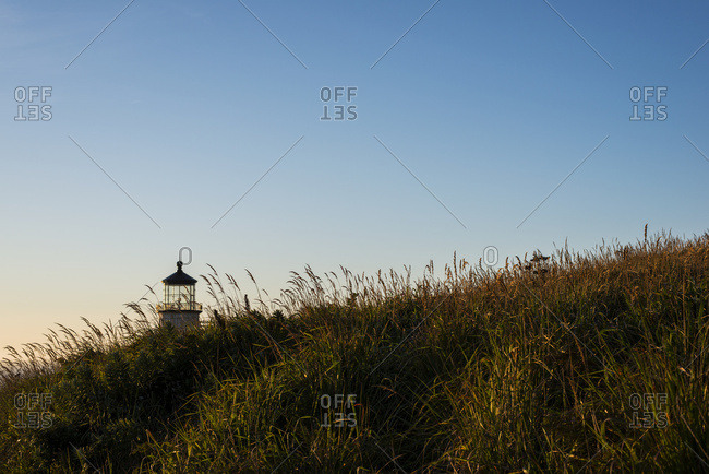 Ilwaco, Washington, United States of America - August 23, 2016: Tall Grass Grows Near North Head Lighthouse On The South Washington Coast; Ilwaco, Washington, United States Of America