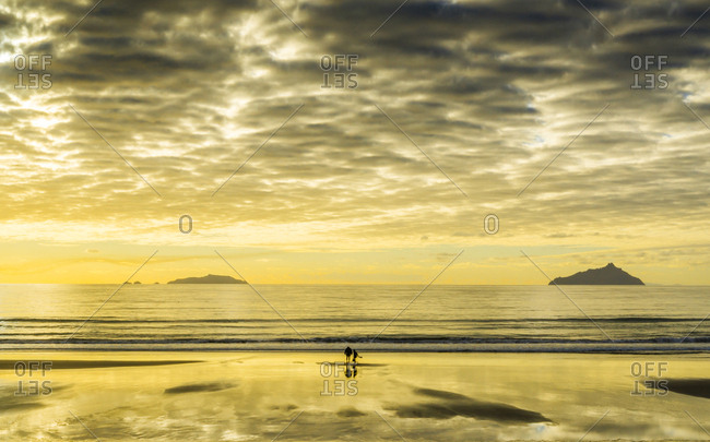 Father and daughter search for shells in the sand, North Island of New Zealand