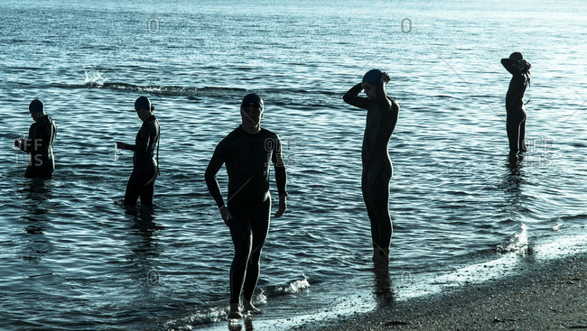 Auckland, New Zealand - December 8, 2012: Swimmers wearing wetsuits at the water's edge as they prepare for a race