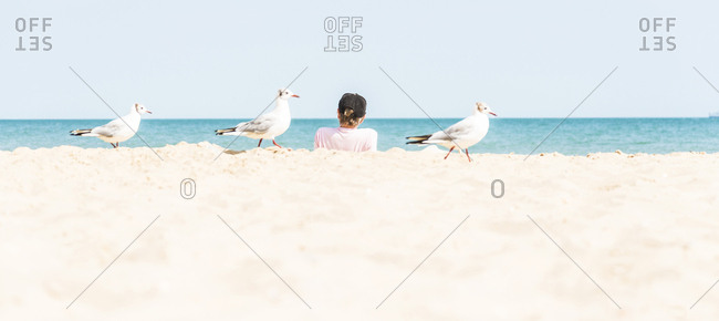 Three seagulls walking along the beach with a tourist in the background