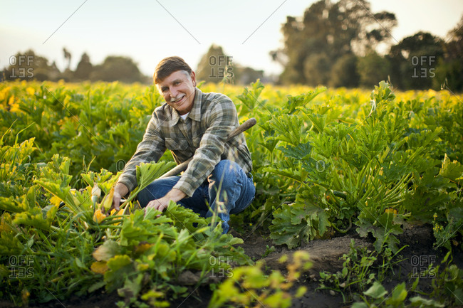 Portrait of a smiling farmer crouching in a field of crops.