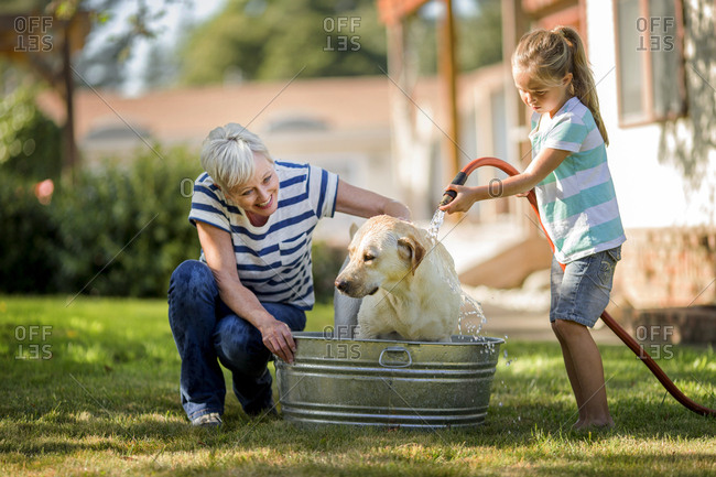 Happy grandmother and granddaughter bathing their dog outside.