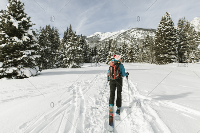 Rear view of woman with skies walking on snow covered field against sky