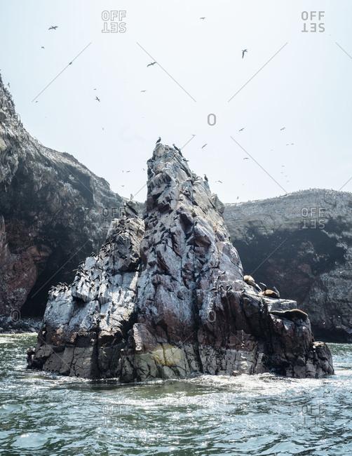 Sea birds flying around pointy rocky island in ocean