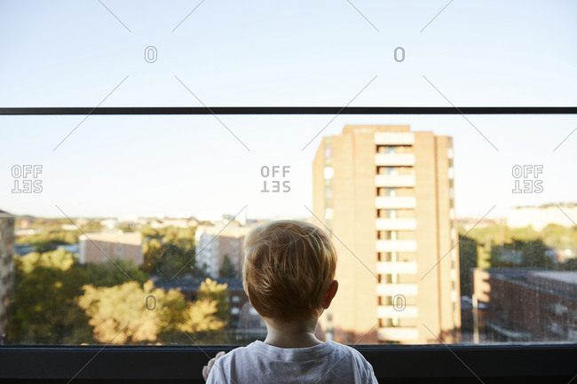Toddler looking at view