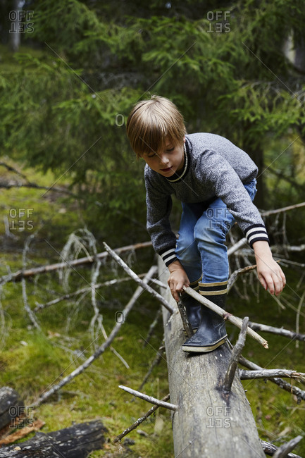 Boy on fallen tree