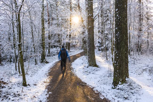 Man walking in winter forest