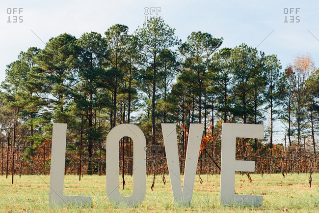 Letters spelling love standing in a field