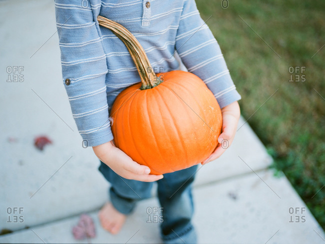 Little boy straining to carry a large pumpkin