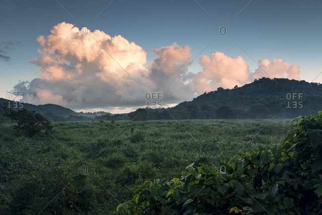 Hills and meadows in morning mood with red cloud on the Caribbean island Puerto Rico