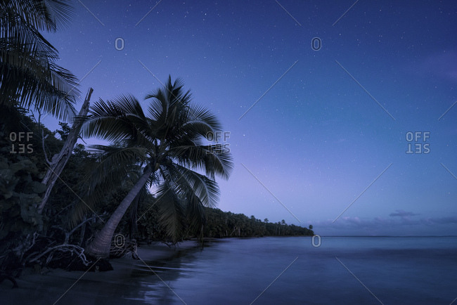 Caribbean night with stars at dawn, dream beach on Puerto Rico