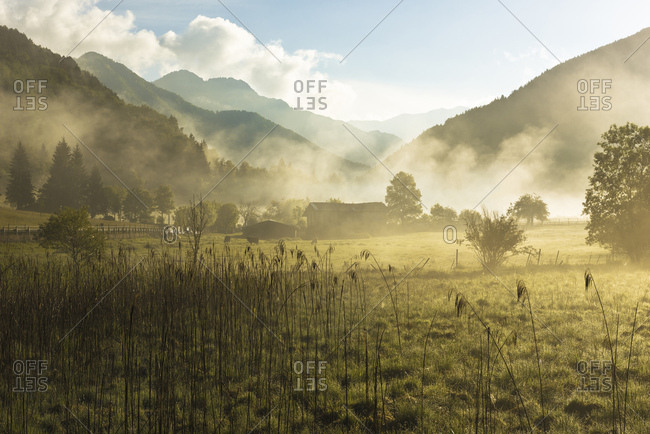 Biotope at Lago d'Ampola, Trentino, Italy