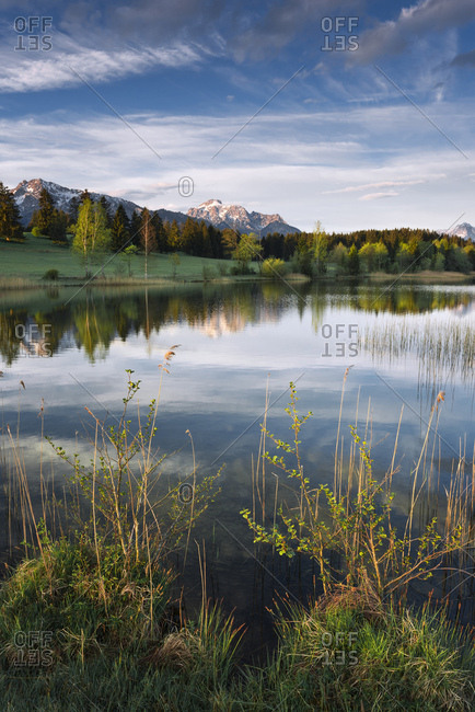 Bavaria, morning on a small idyllic lake in the Allgsu region with Alps in the background