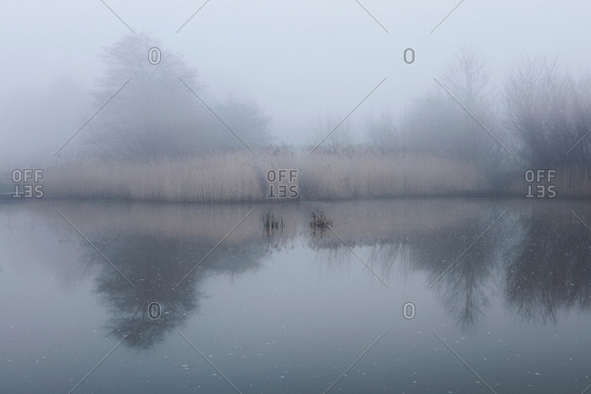 Scenic view of lake with mist, Houghton-le-Spring, Sunderland, UK