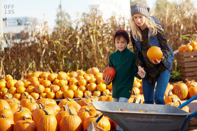 Young woman and son selecting pumpkins for wheelbarrow at pumpkin patch