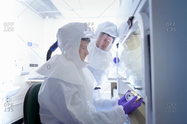 Scientists working in protective wear in laboratory