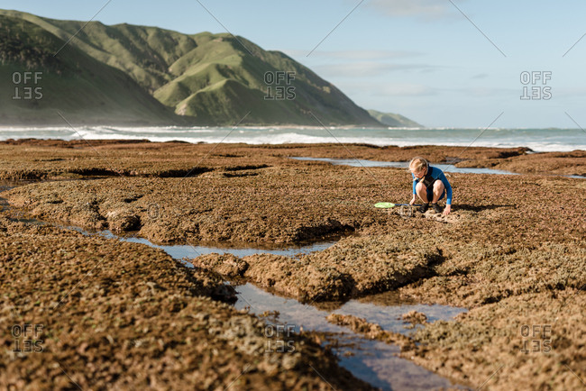 Girl exploring a sandy beach on the coast of New Zealand