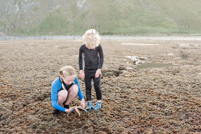 Siblings looking at a sea star found on Hawke's Bay, New Zealand