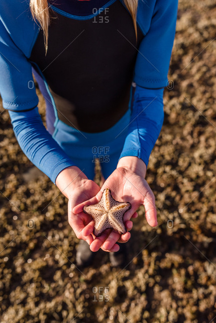 Girl's hands holding a starfish