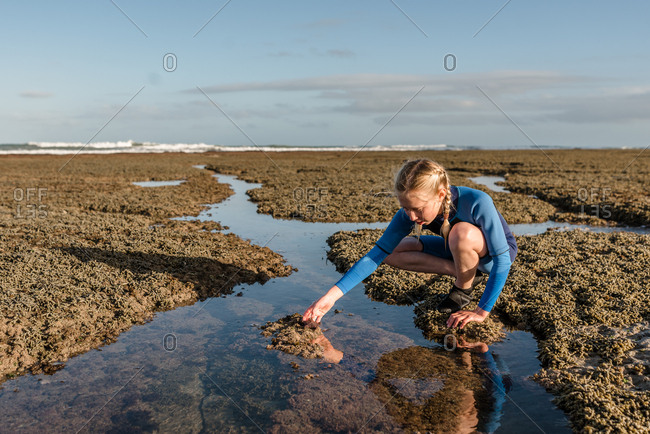 Girl reaching for a starfish in a rock pool