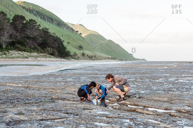 Father and kids exploring rock pools on the coast of New Zealand