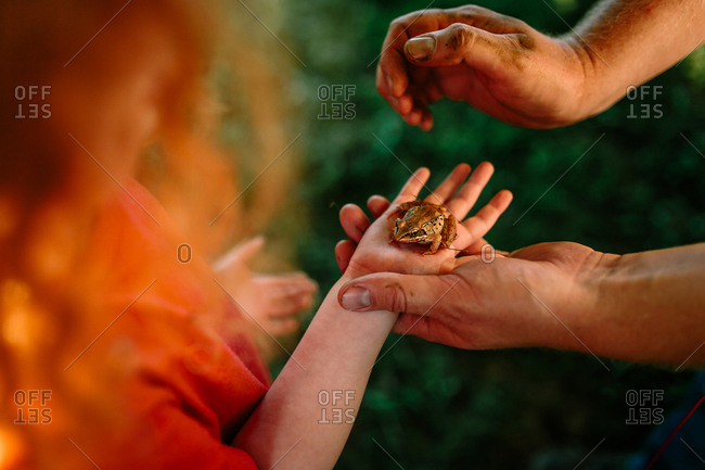 Father helping son hold frog