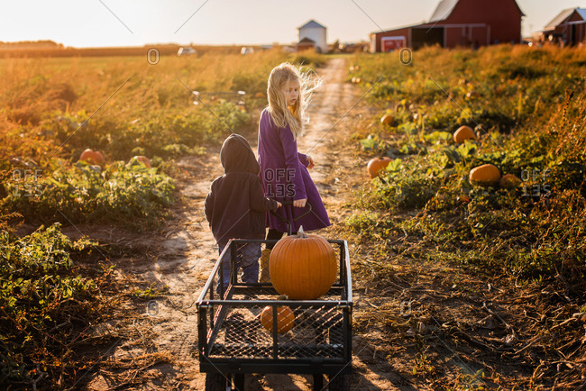 Girl and boy pulling pumpkins in a wagon down path