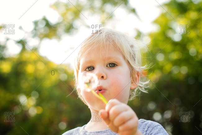 Toddler blowing through dandelion outside on a sunny day