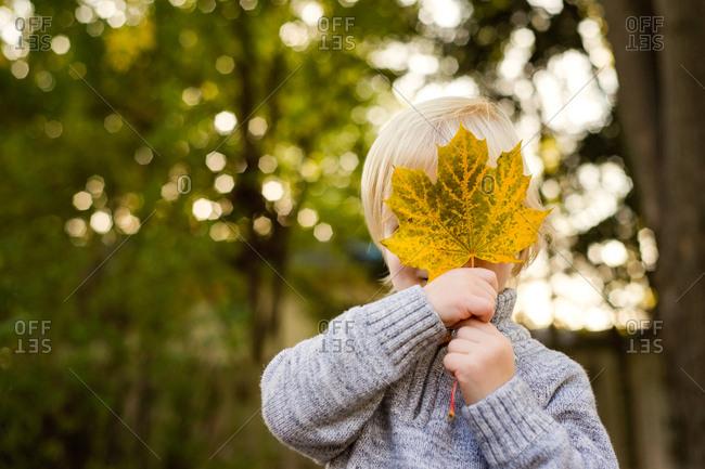 Cute little kid hiding face behind large leaf