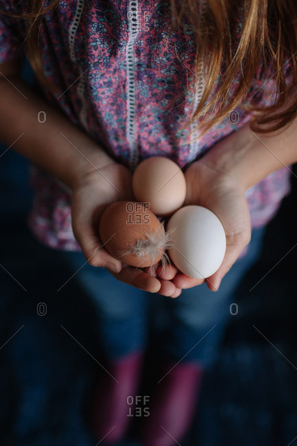 Child holding multicolored fresh eggs in palm of her hands