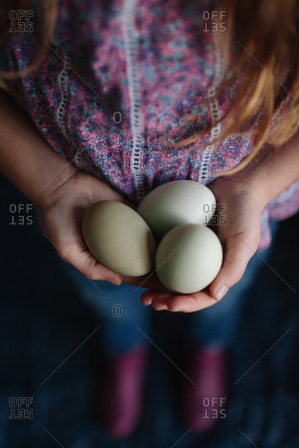 Child holding fresh eggs in palm of her hands