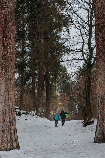 Rear view of two kids carrying sled through forest