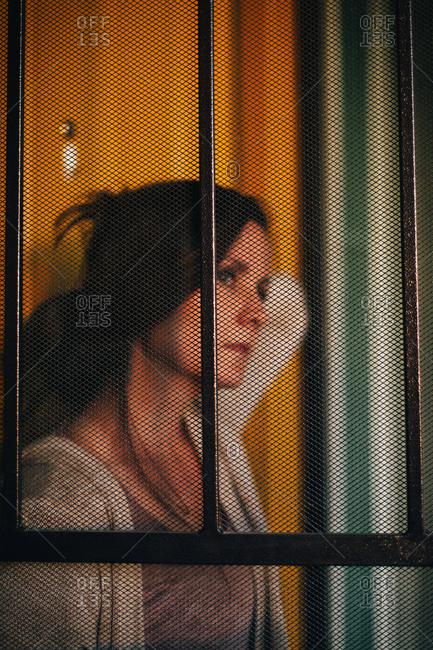 Portrait of a woman through a screen door