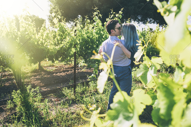 Young man carrying and kissing woman while standing in vineyard