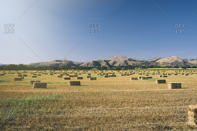 Idyllic view of hay bales on field against clear sky