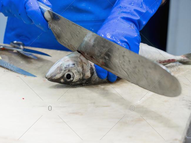 Close-up of man chopping fish