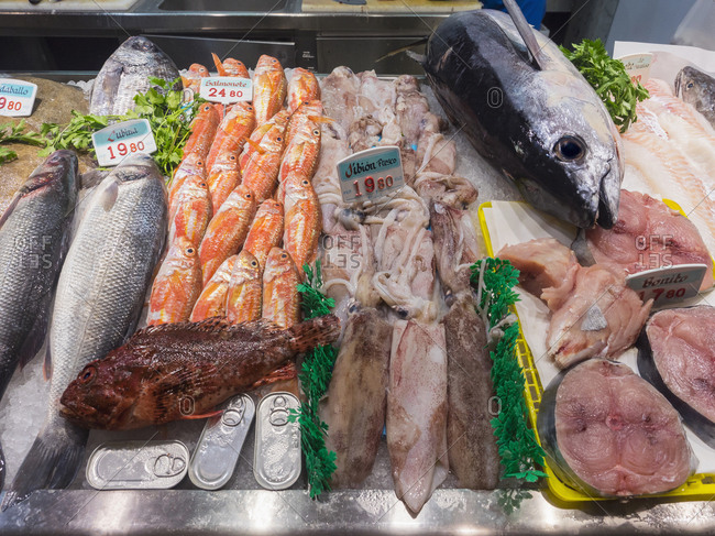 Variety of seafood for sale in fish market