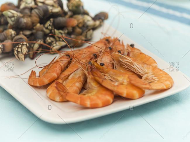Spanish seafood on tray
