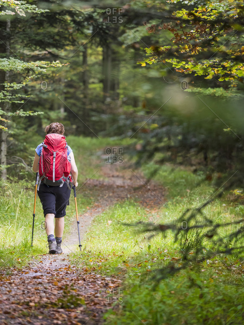 Woman on hiking tour in the Northern Black Forest, Bad Wildbad, Baden-Wurttemberg, Germany