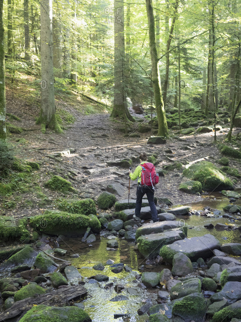 Woman on hiking tour in the Northern Black Forest, Monbachtal, Bad Liebenzell, Baden-Wurttemberg, Germany