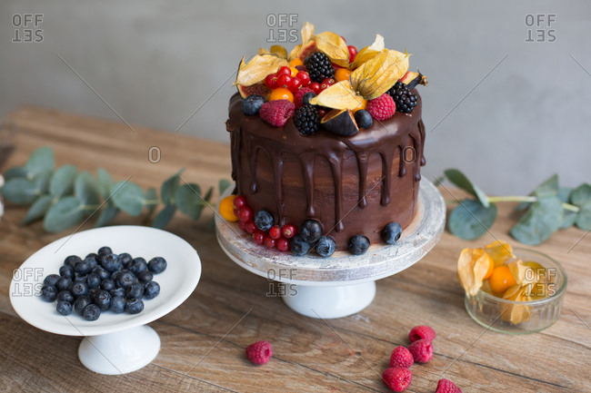 High angle view of decadent chocolate sponge cake topped with variety of berries