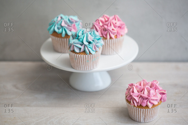 High angle view of cupcakes with pink and blue frosting