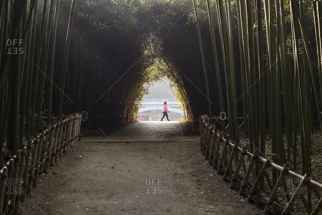 Taehwa-dong, Jung-gu, Ulsan,�korea - January 21, 2018: Bamboo Park on the morning walk