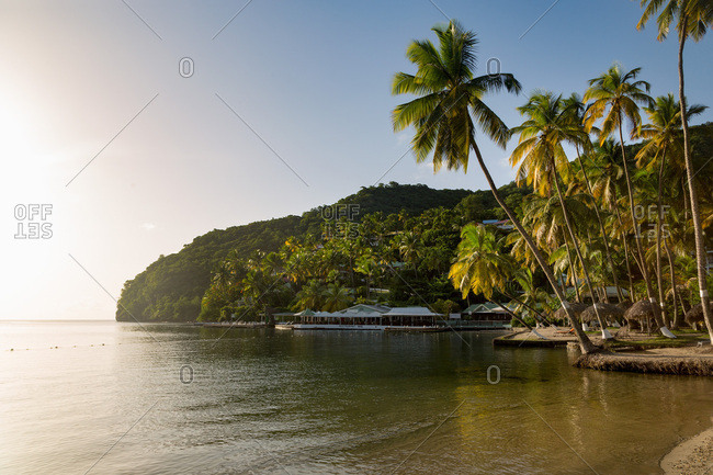 August 4, 2017: Tall palms on the small beach at Marigot Bay, St. Lucia, Windward Islands, West Indies Caribbean, Central America