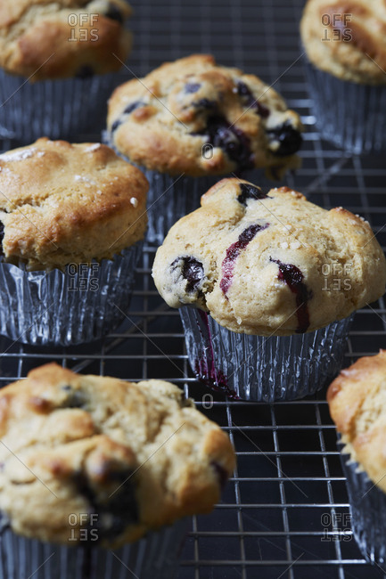 Blueberry muffins in cupcake holders