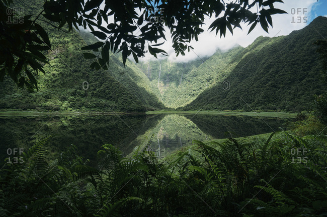 Scenic view of calm lake amidst mountains at forest