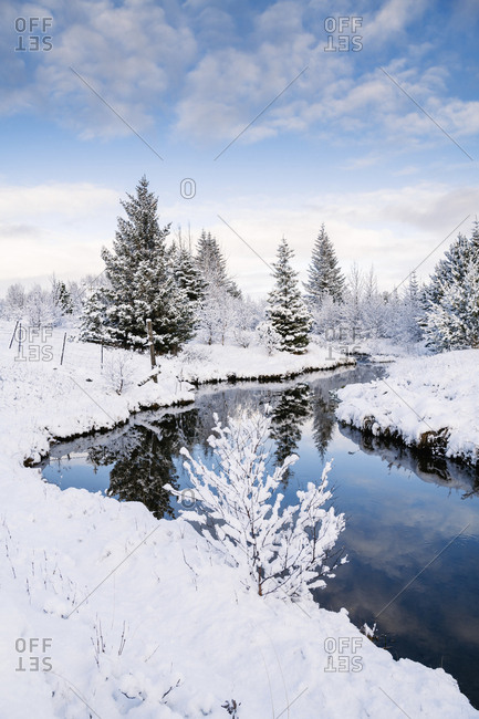 Tranquil view of trees by stream amidst snow covered field