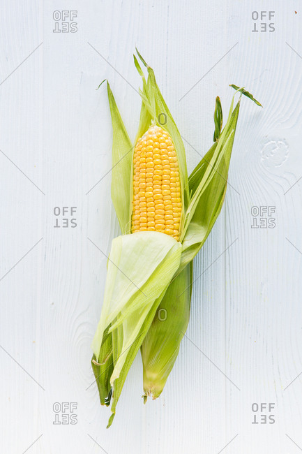 Partially peeled corn on the cob