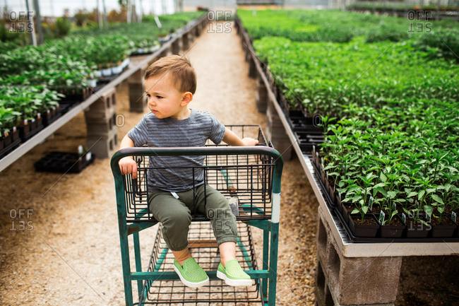 Toddler riding in cart at a garden center