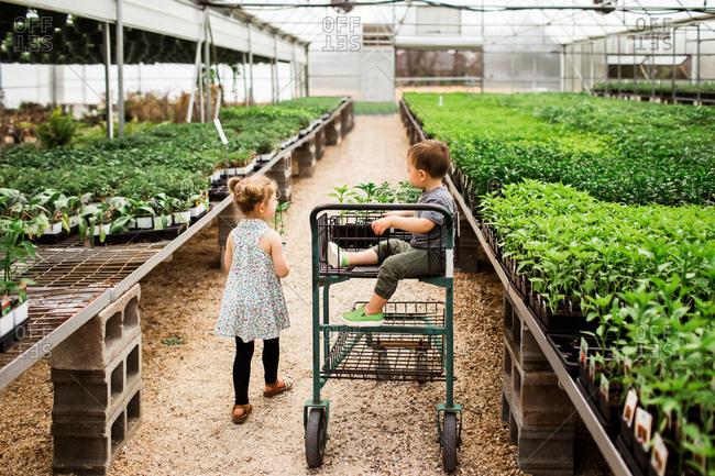 Two kids in a garden center